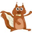 Squirrel with nut cartoon vector