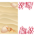 Summer background with seashells vector