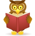 Owl reading book vector