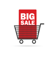 Big sale icon with basket color vector