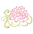 Lotus floral element vector