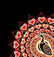 Peacock love card vector