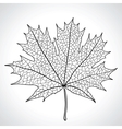 Leaf of a maple nature symbol monochrome vector