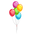 Party ballons vector