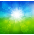Summer beautiful landscape view with sunlight vector
