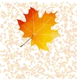 Autumn leaf abstract backgrounds plus eps10 vector