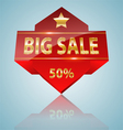 Big sale icon vector