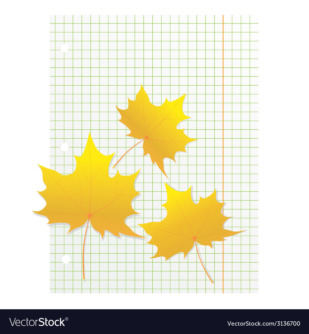 Maple leaves on a writing book in a cage vector | Price: 1 Credit (USD $1)