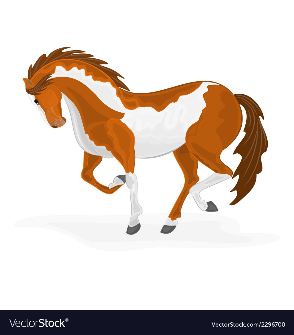 Piebald-horse vector | Price: 1 Credit (USD $1)