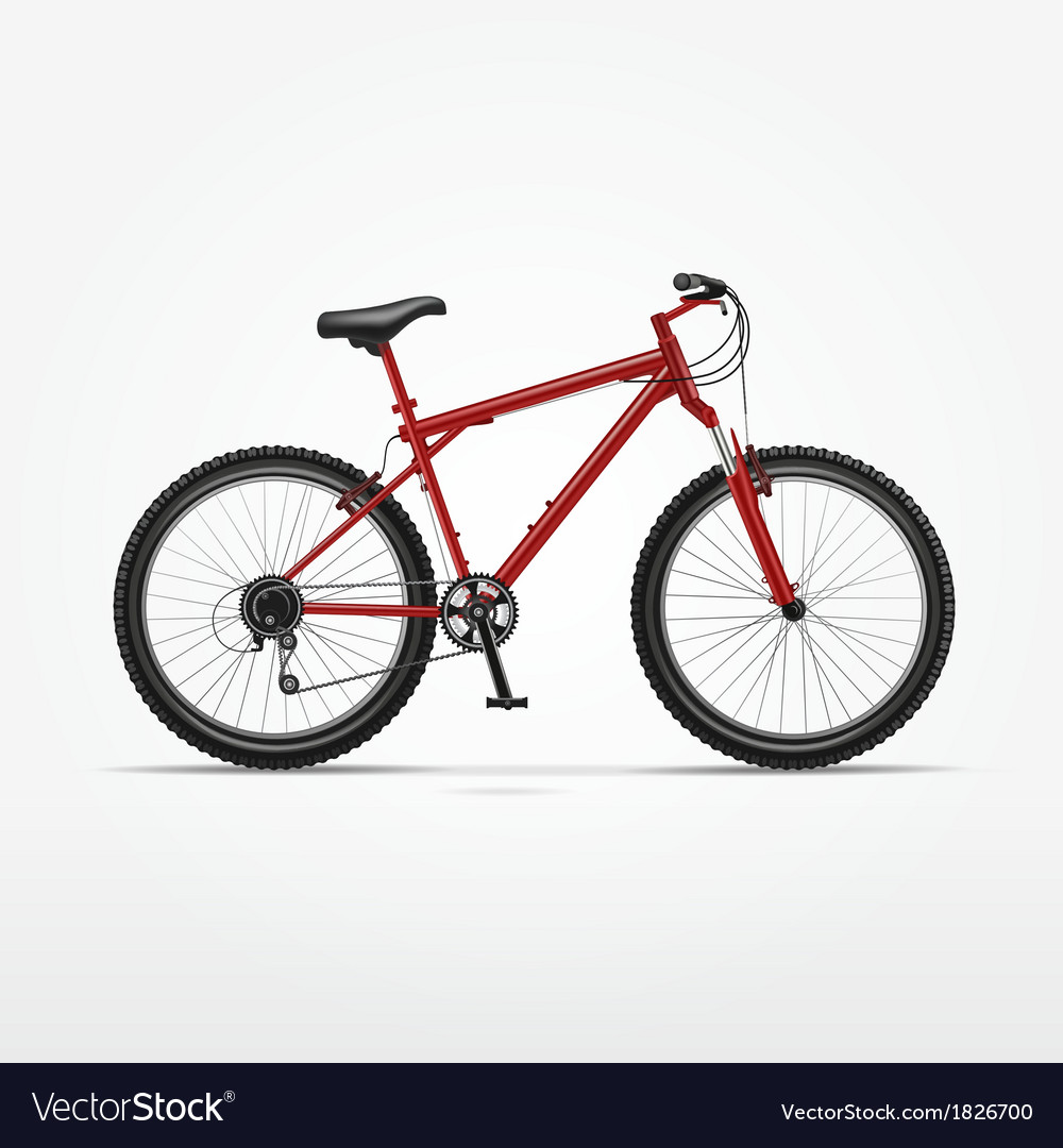 Realistic isolated bicycle vector | Price: 1 Credit (USD $1)