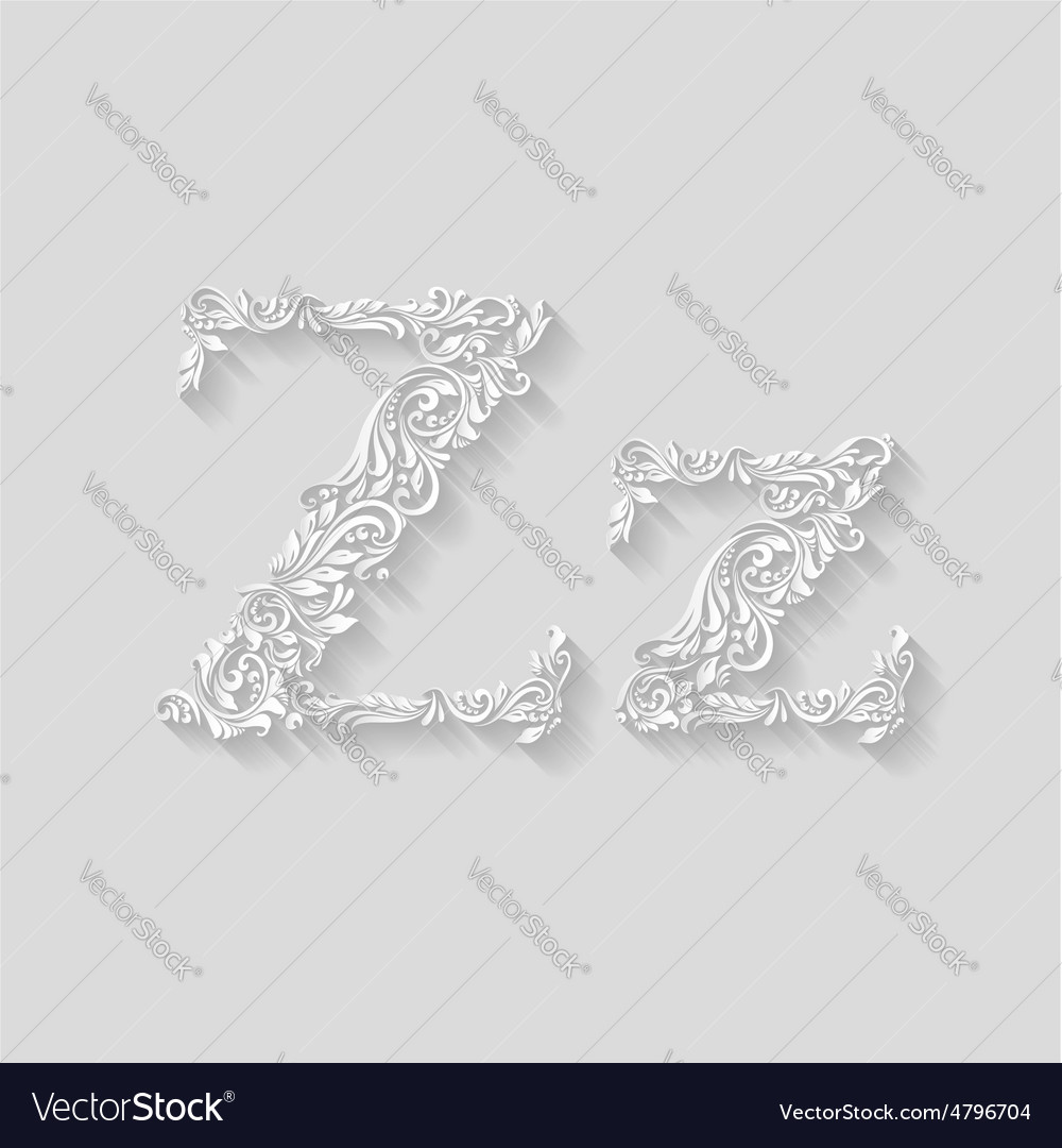 Decorated letter z vector | Price: 1 Credit (USD $1)