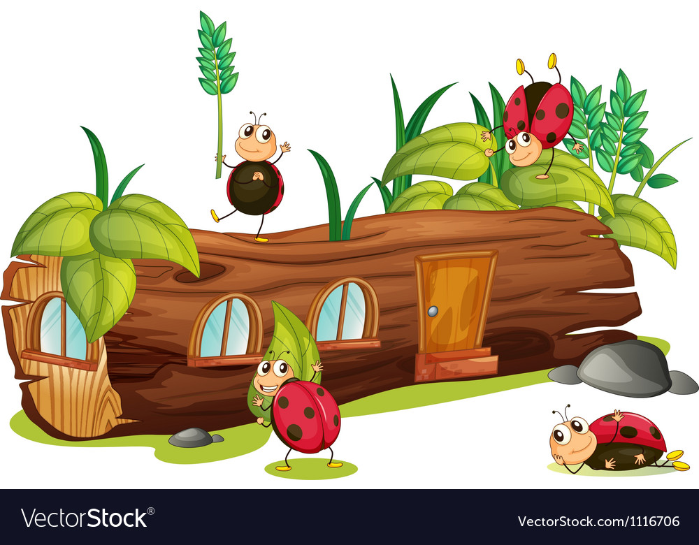 Ladybugs and a house vector | Price: 1 Credit (USD $1)
