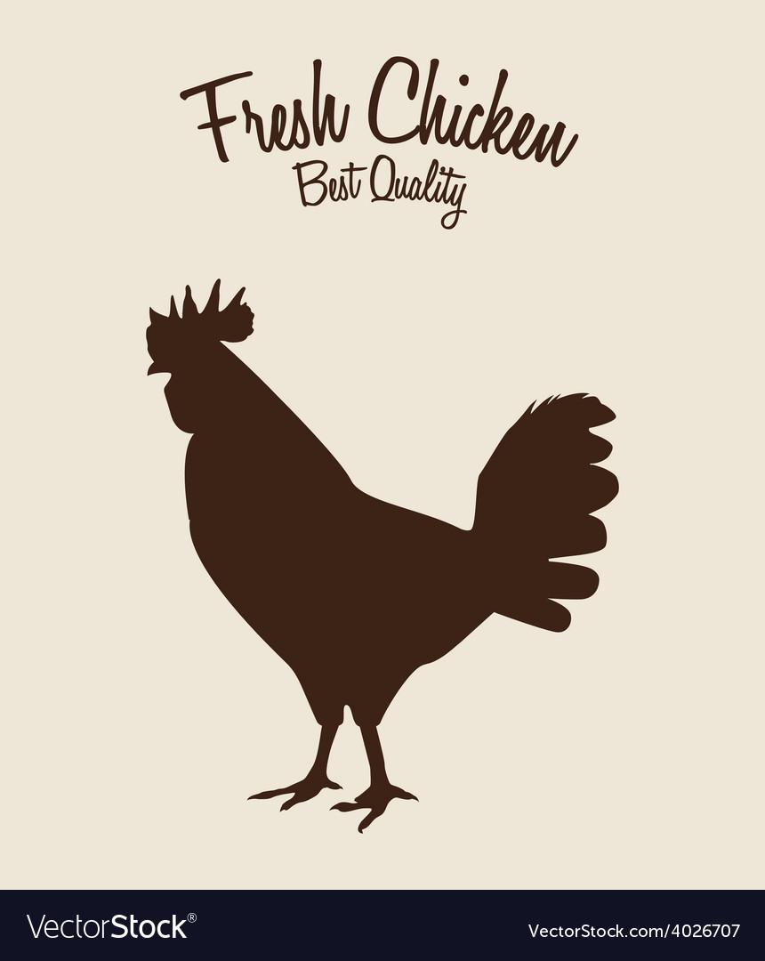 Fresh chicken vector   Price: 1 Credit (USD $1)