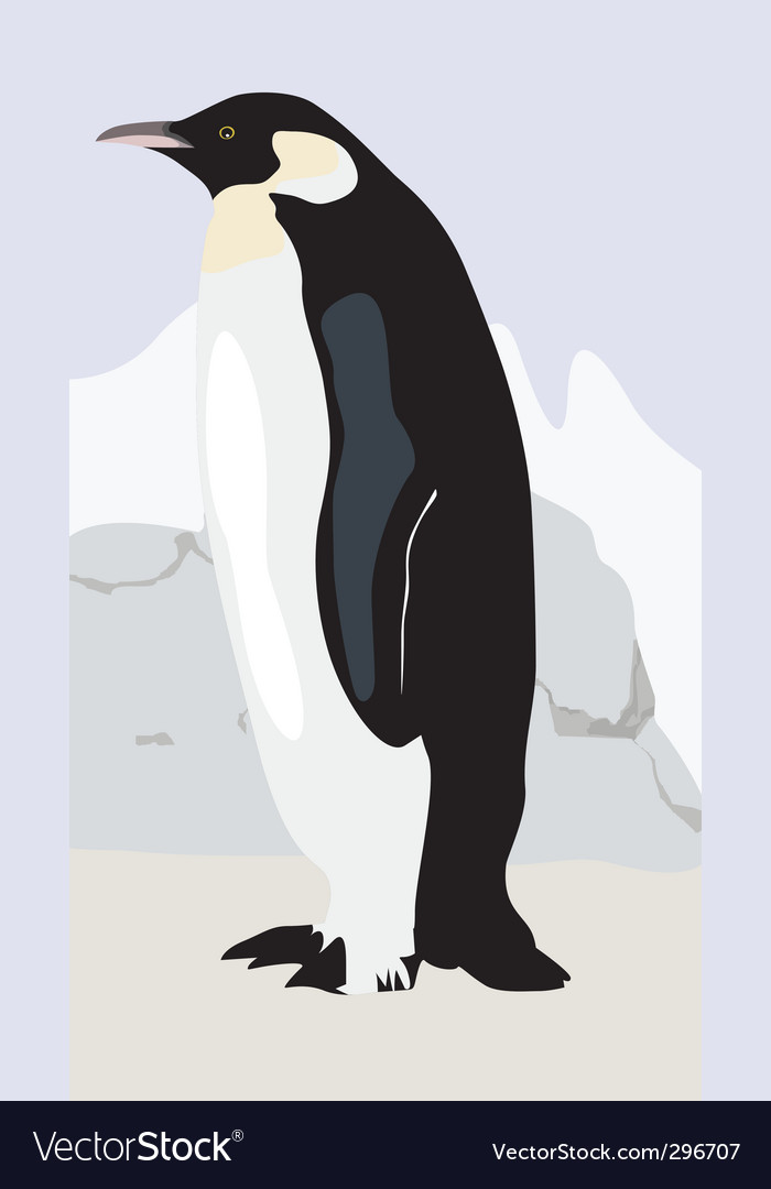 Penguin vector | Price: 3 Credit (USD $3)