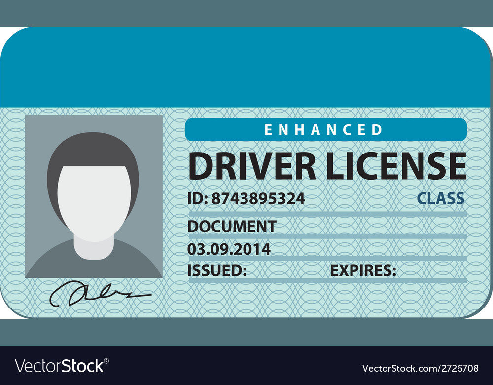 Driver license vector | Price: 1 Credit (USD $1)