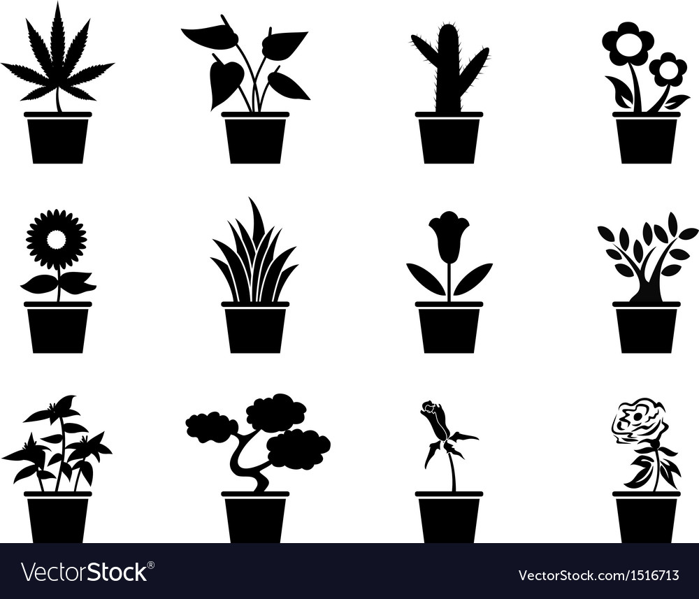 Pot plants icons set vector | Price: 1 Credit (USD $1)