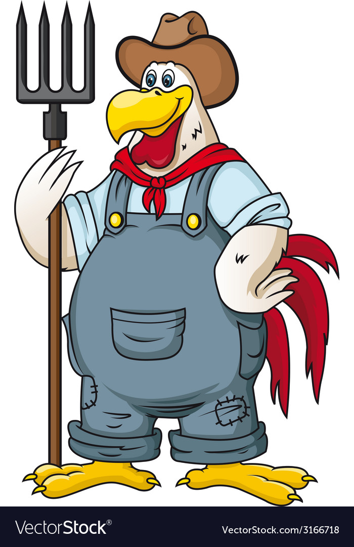 Farm rooster vector