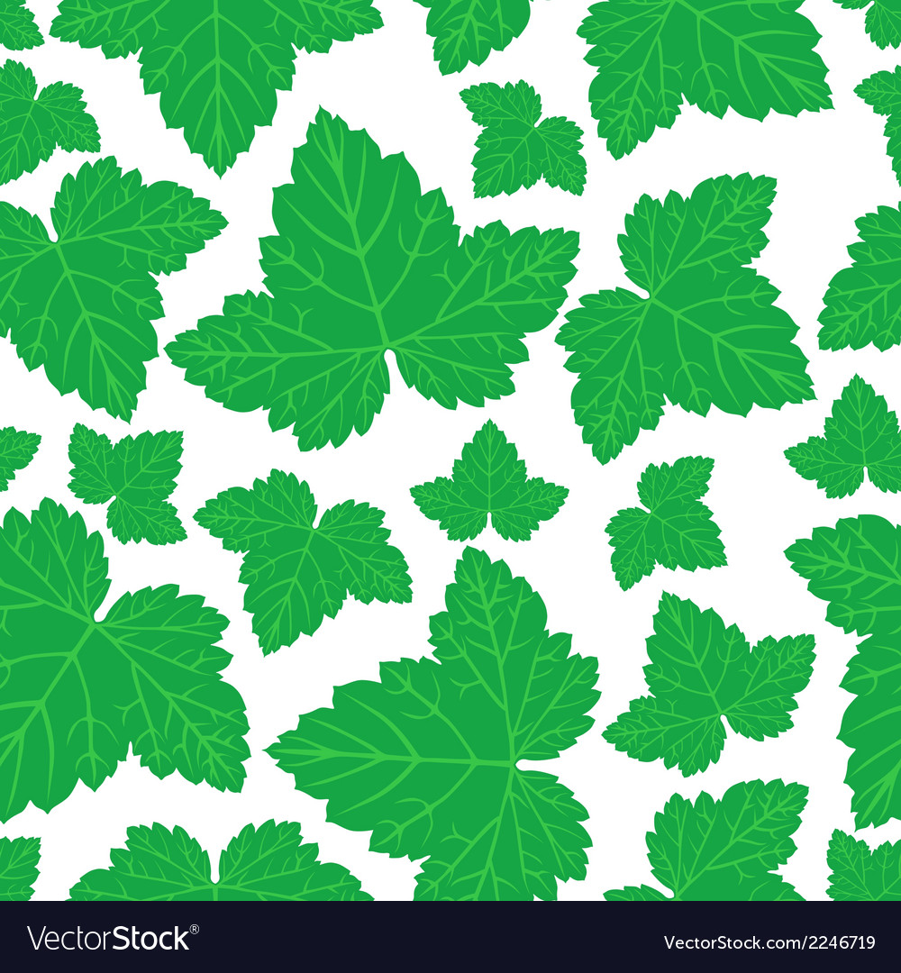 Curran leaves pattern vector | Price: 1 Credit (USD $1)