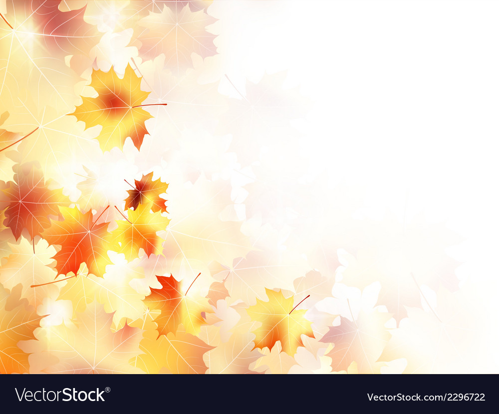 Beautiful maple leaves forest plus eps10 vector | Price: 1 Credit (USD $1)