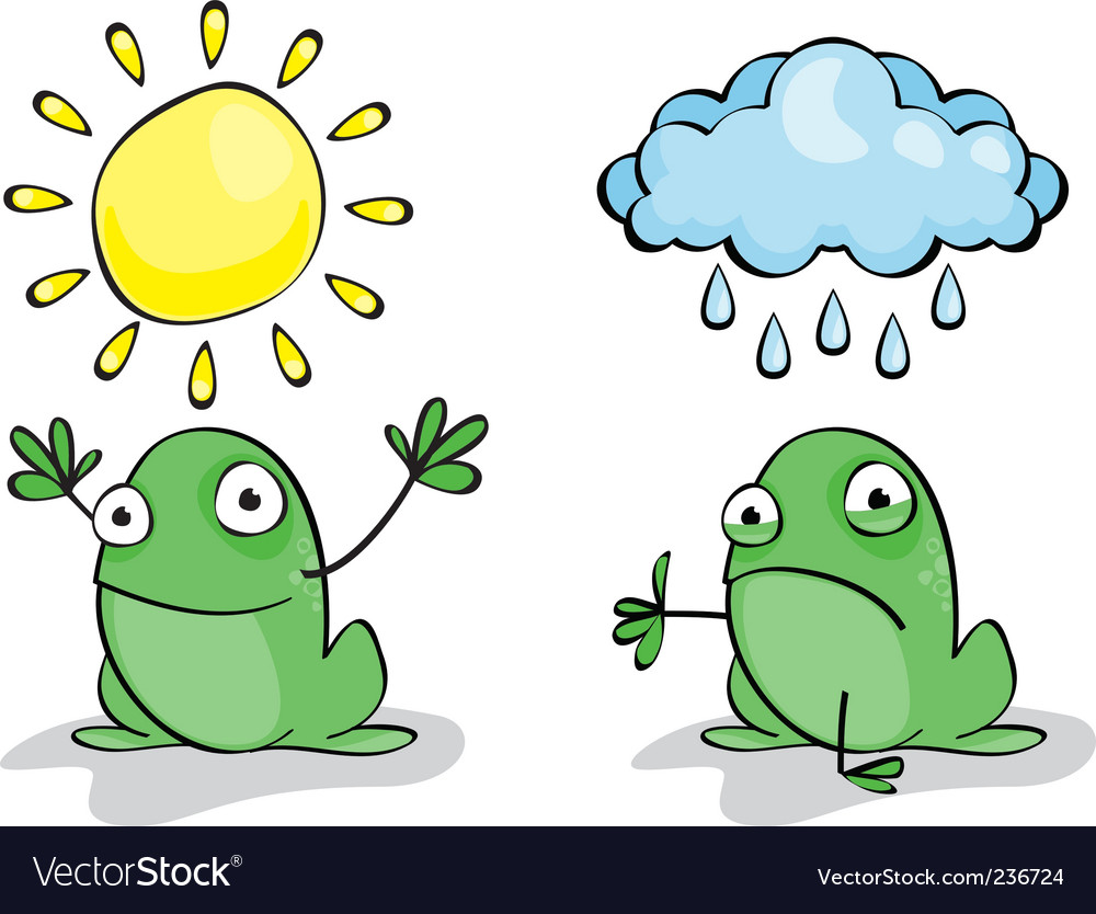 Weather frog vector | Price: 1 Credit (USD $1)