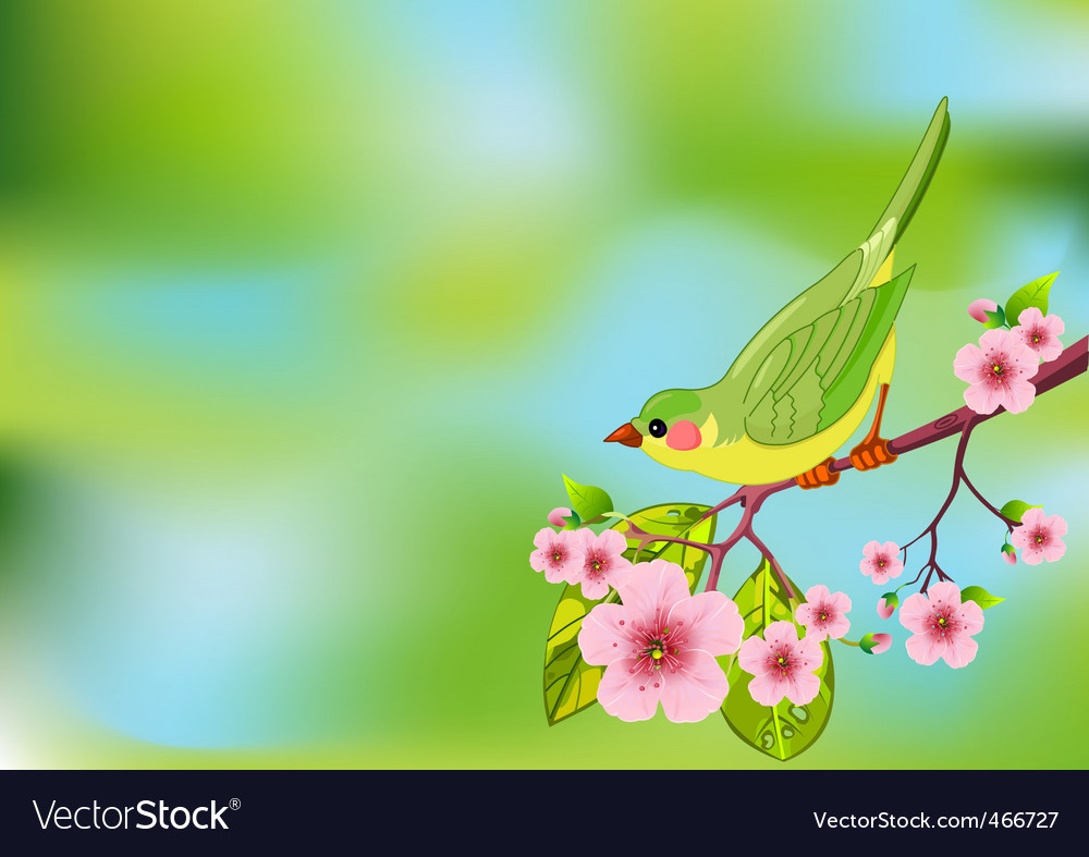 Spring bird background vector | Price: 1 Credit (USD $1)