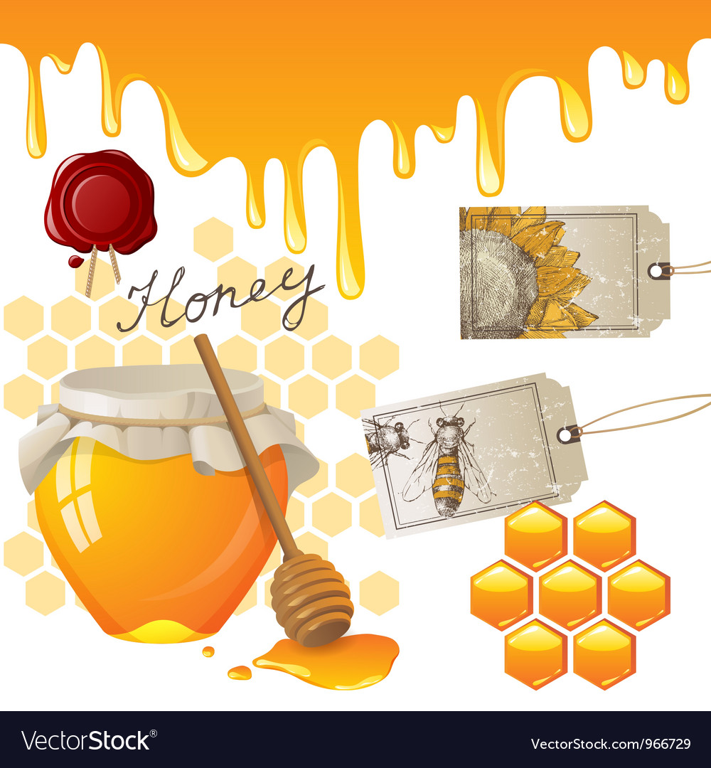 Honey set vector | Price: 3 Credit (USD $3)