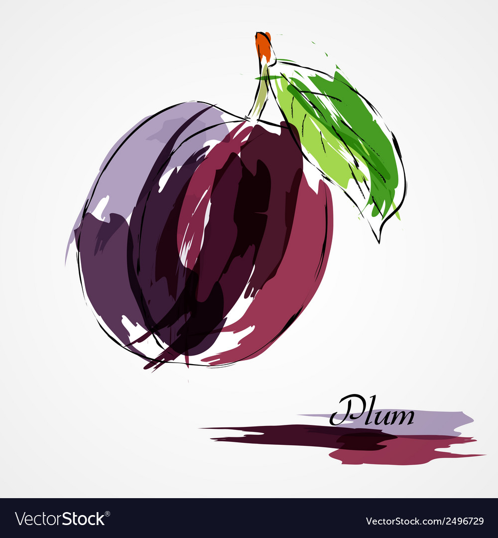 Plum fruit vector | Price: 1 Credit (USD $1)