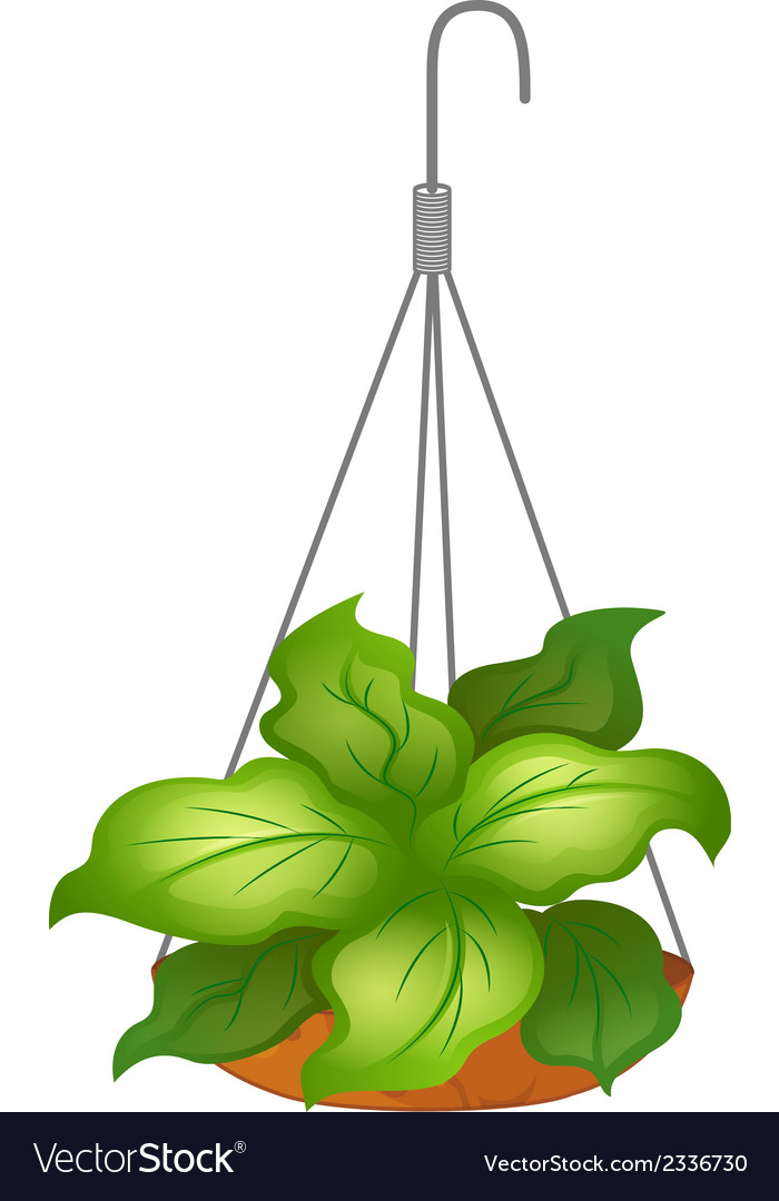 A hanging pot with green leafy plant vector | Price: 1 Credit (USD $1)