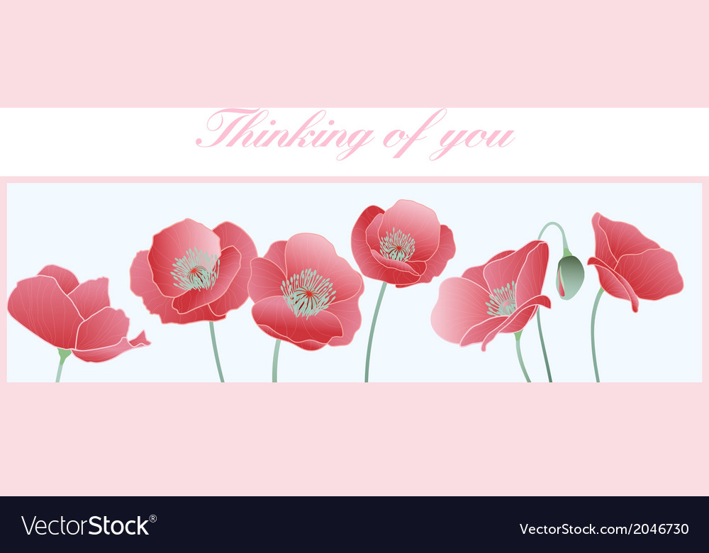Poppies thinking of you card vector | Price: 1 Credit (USD $1)