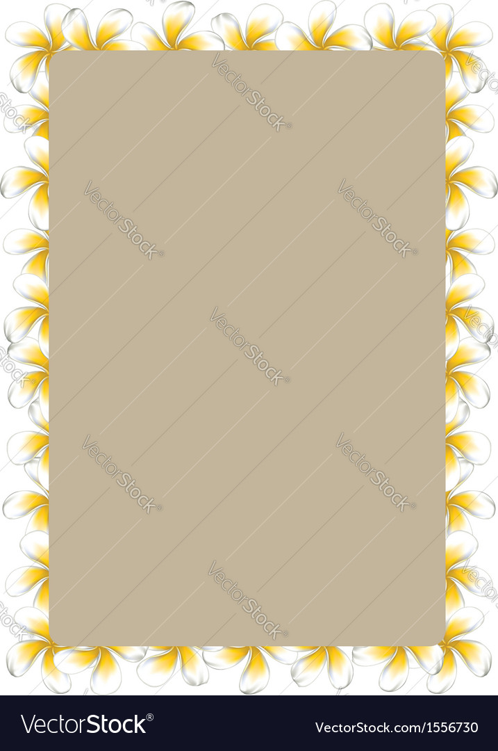 White frangipani flowers frame2 vector | Price: 1 Credit (USD $1)