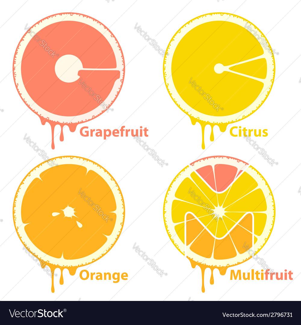Citrus icons vector | Price: 1 Credit (USD $1)