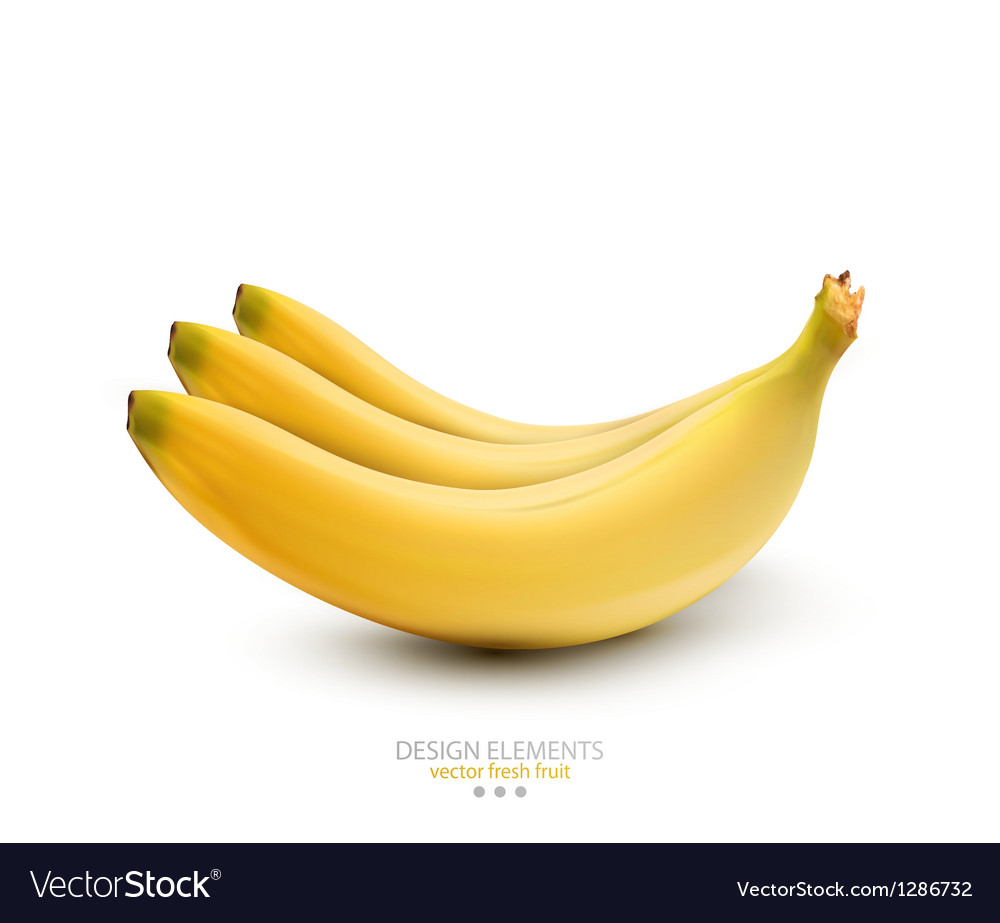 Bananas on white background vector | Price: 3 Credit (USD $3)
