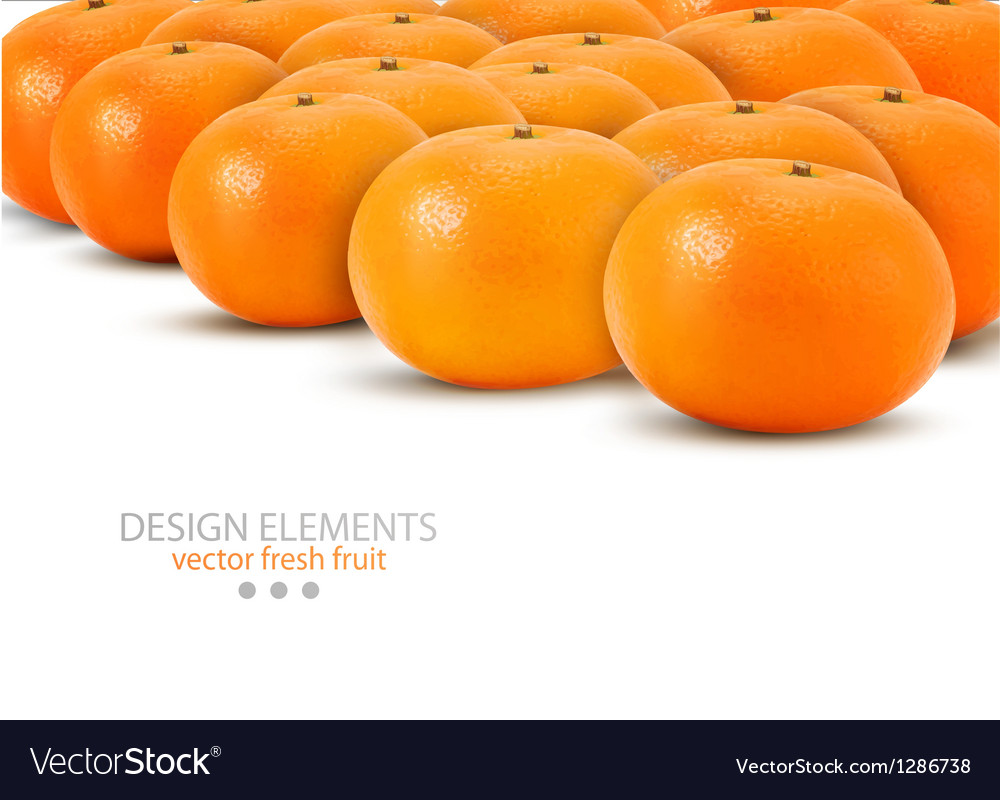 Mandarin isolated on white background vector | Price: 3 Credit (USD $3)