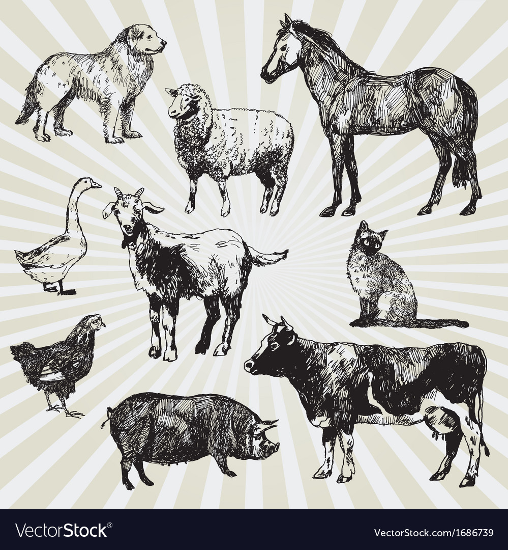 Home animals vector | Price: 1 Credit (USD $1)