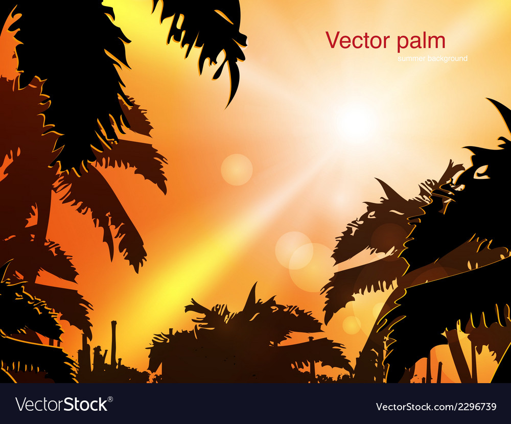 Jungle at sunset vector | Price: 1 Credit (USD $1)