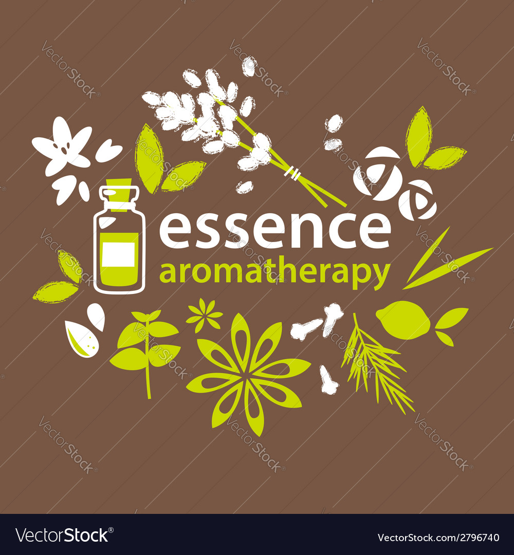 Aromatherapy flowers and plants vector | Price: 1 Credit (USD $1)