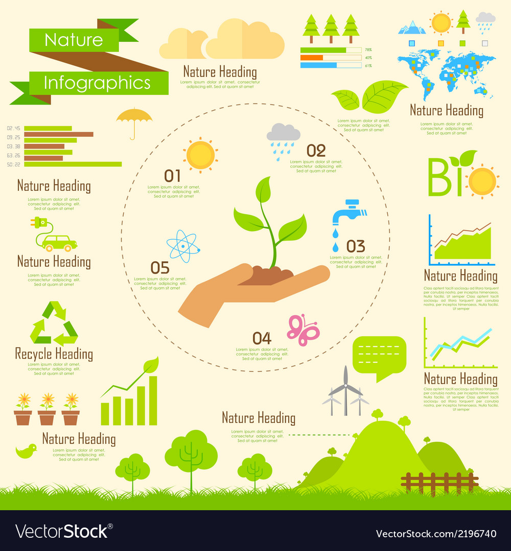 Nature infographics vector | Price: 1 Credit (USD $1)