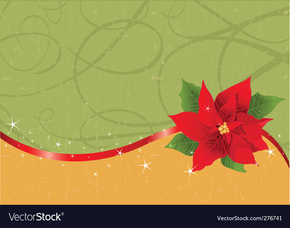 Christmas poinsettia background vector | Price: 1 Credit (USD $1)