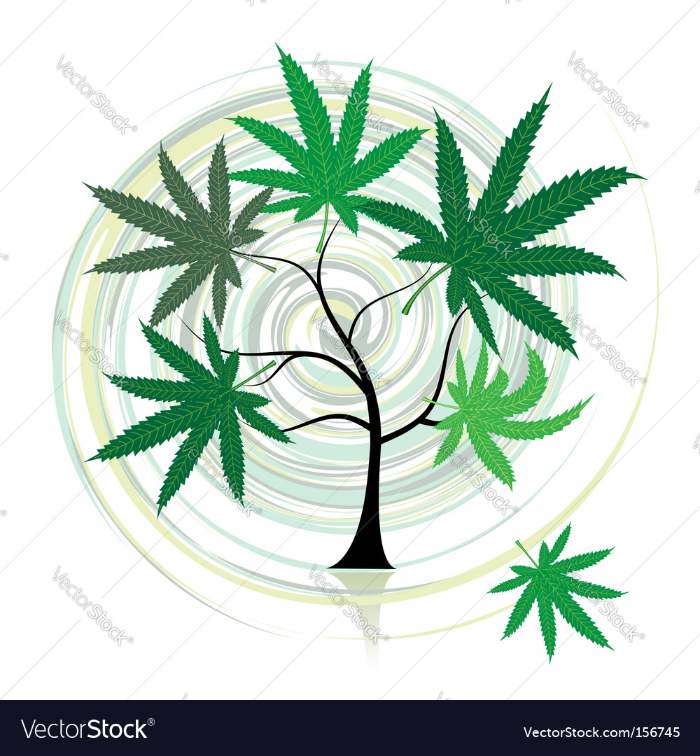 Cannabis tree vector | Price: 1 Credit (USD $1)