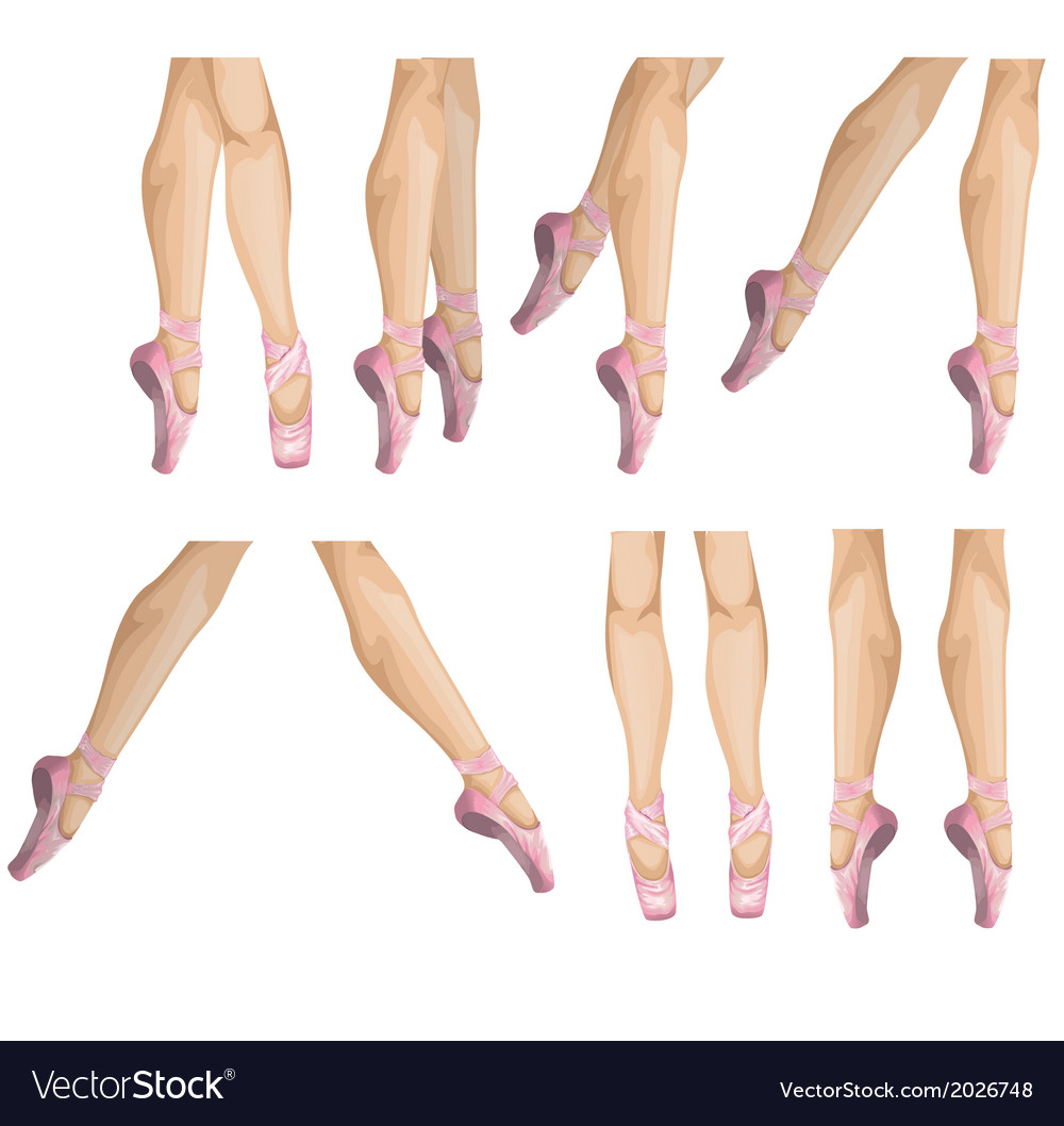Ballerinas leg vector | Price: 1 Credit (USD $1)