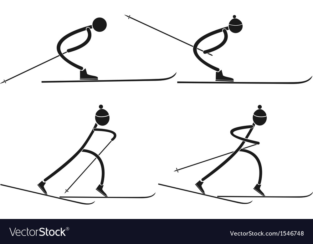 Cross country skiing vector | Price: 1 Credit (USD $1)