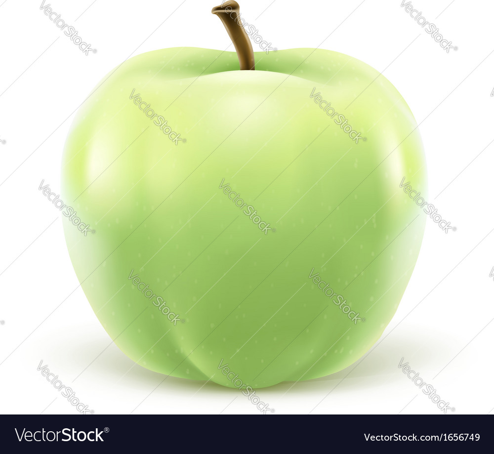 Greeen apple isolated on vector | Price: 1 Credit (USD $1)