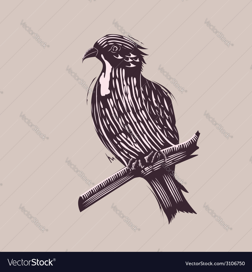 Bird in hand drawn style vector | Price: 1 Credit (USD $1)