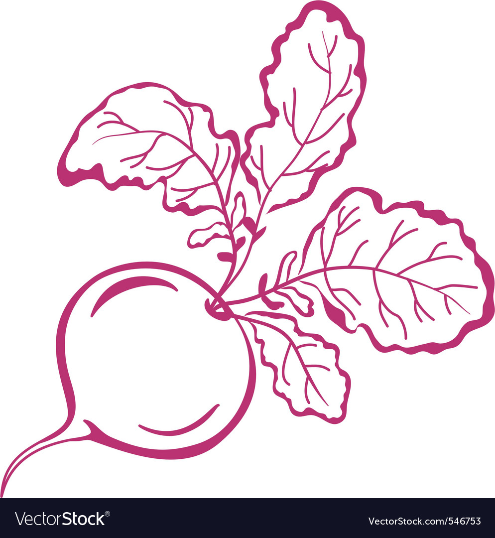 Radish with leaves pictogram vector | Price: 1 Credit (USD $1)