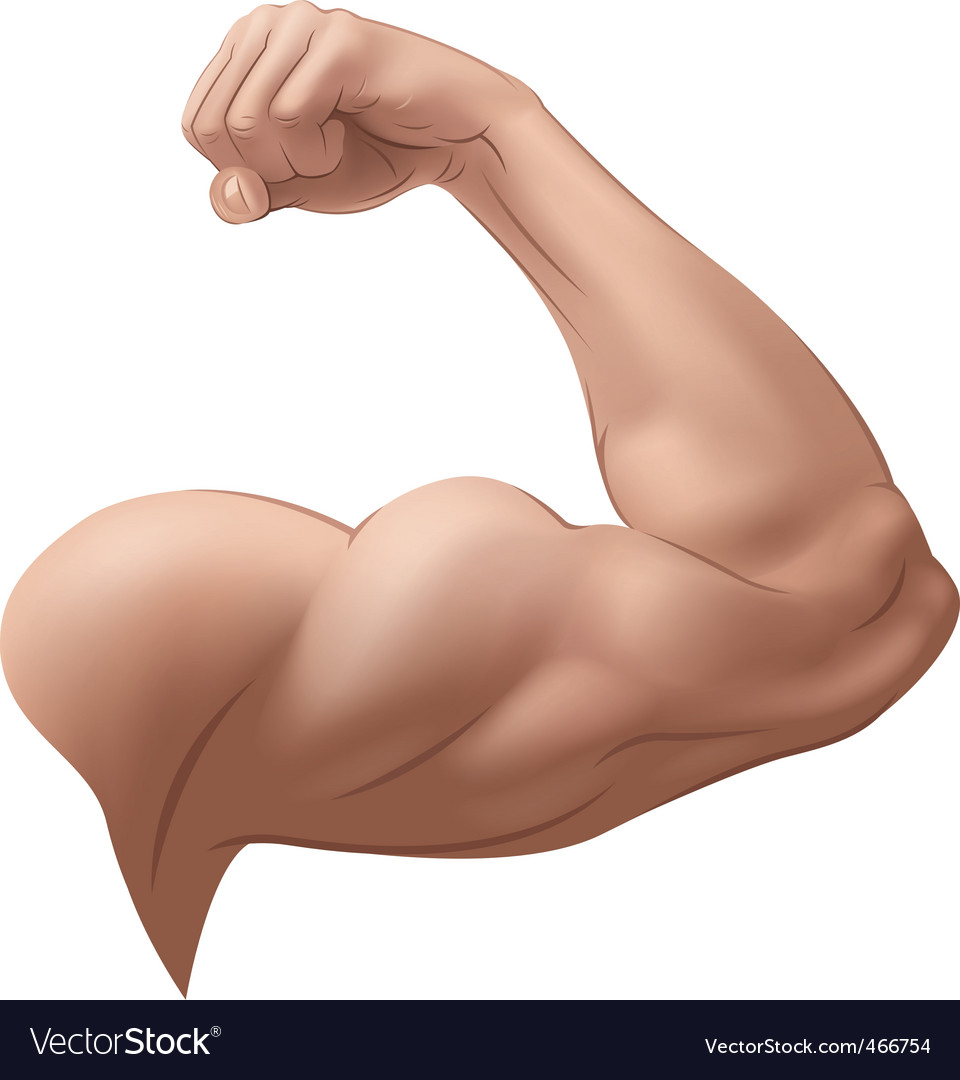Mans arm vector | Price: 1 Credit (USD $1)