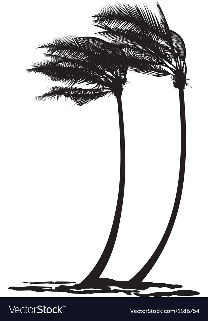 Palm trees in the wind vector | Price: 1 Credit (USD $1)