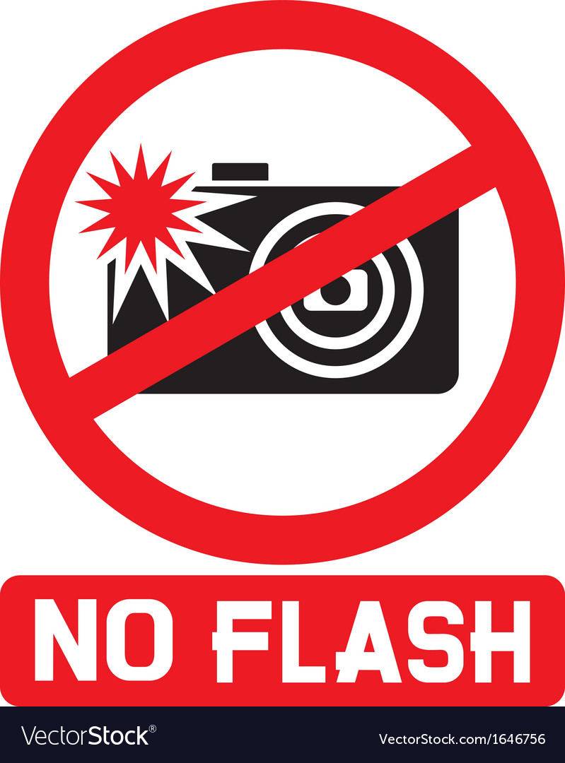 No flash sign vector | Price: 1 Credit (USD $1)