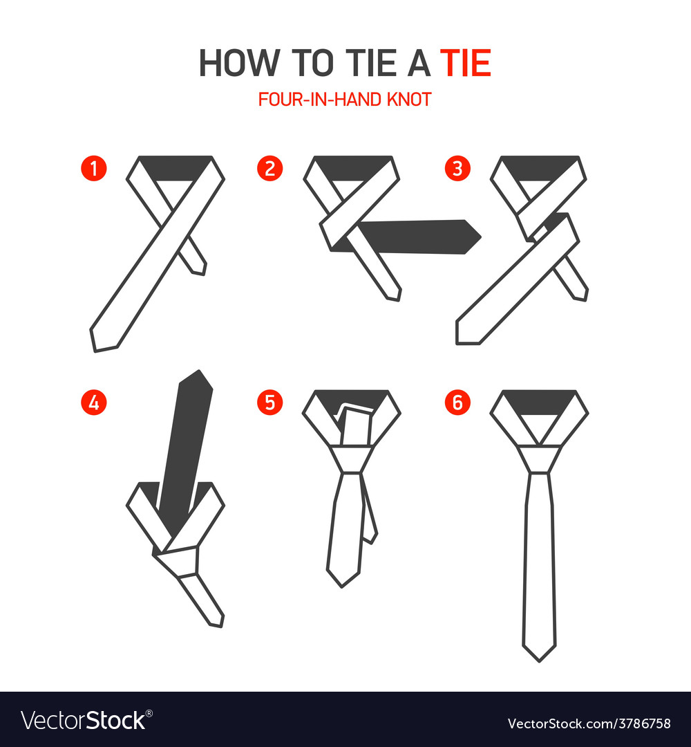 How to tie a tie instructions vector | Price: 1 Credit (USD $1)