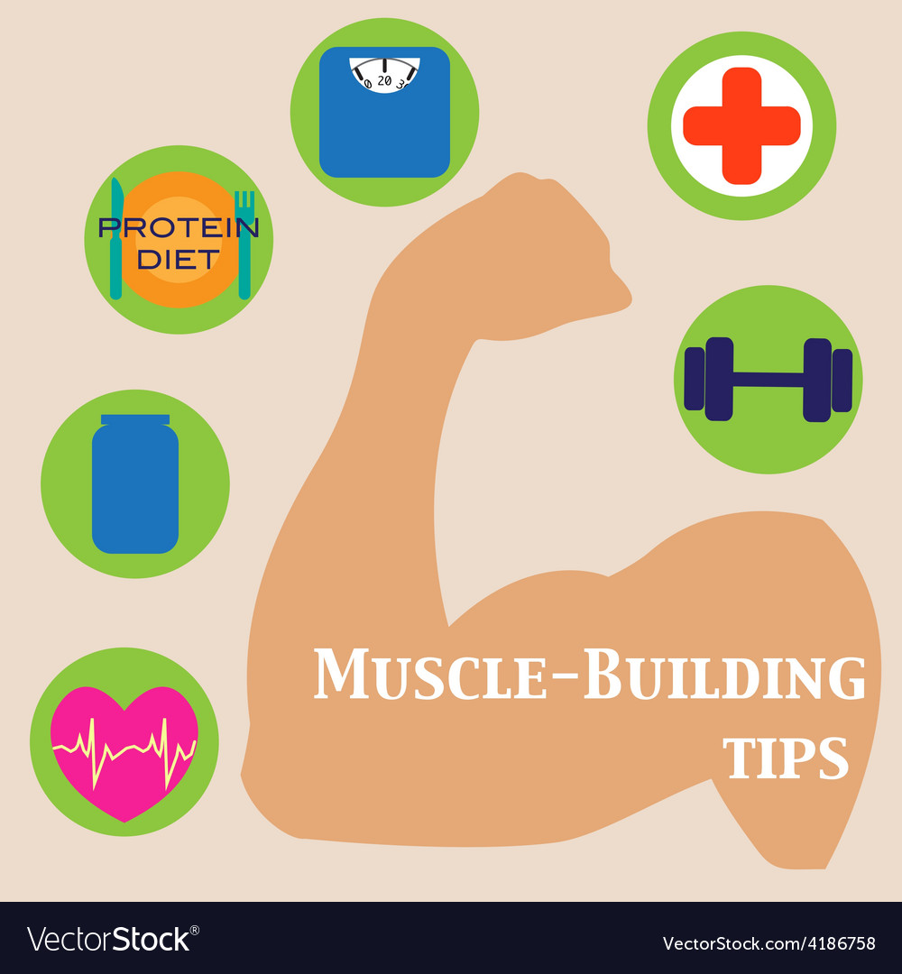 Muscle-building set vector | Price: 1 Credit (USD $1)
