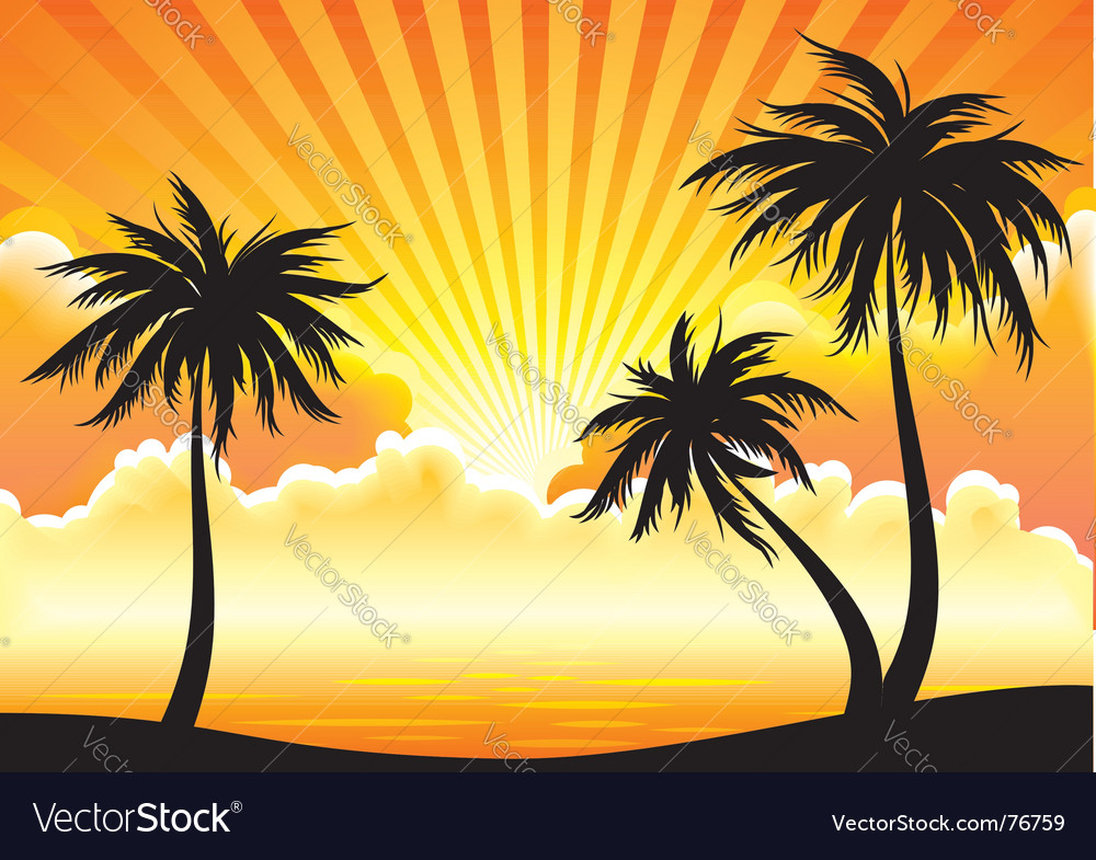 Sunset coastline vector | Price: 1 Credit (USD $1)
